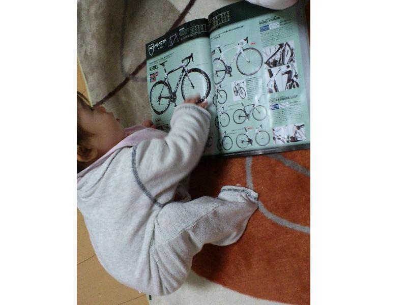 とある自転車好き(1歳)